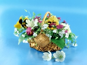 basket, color, Flowers
