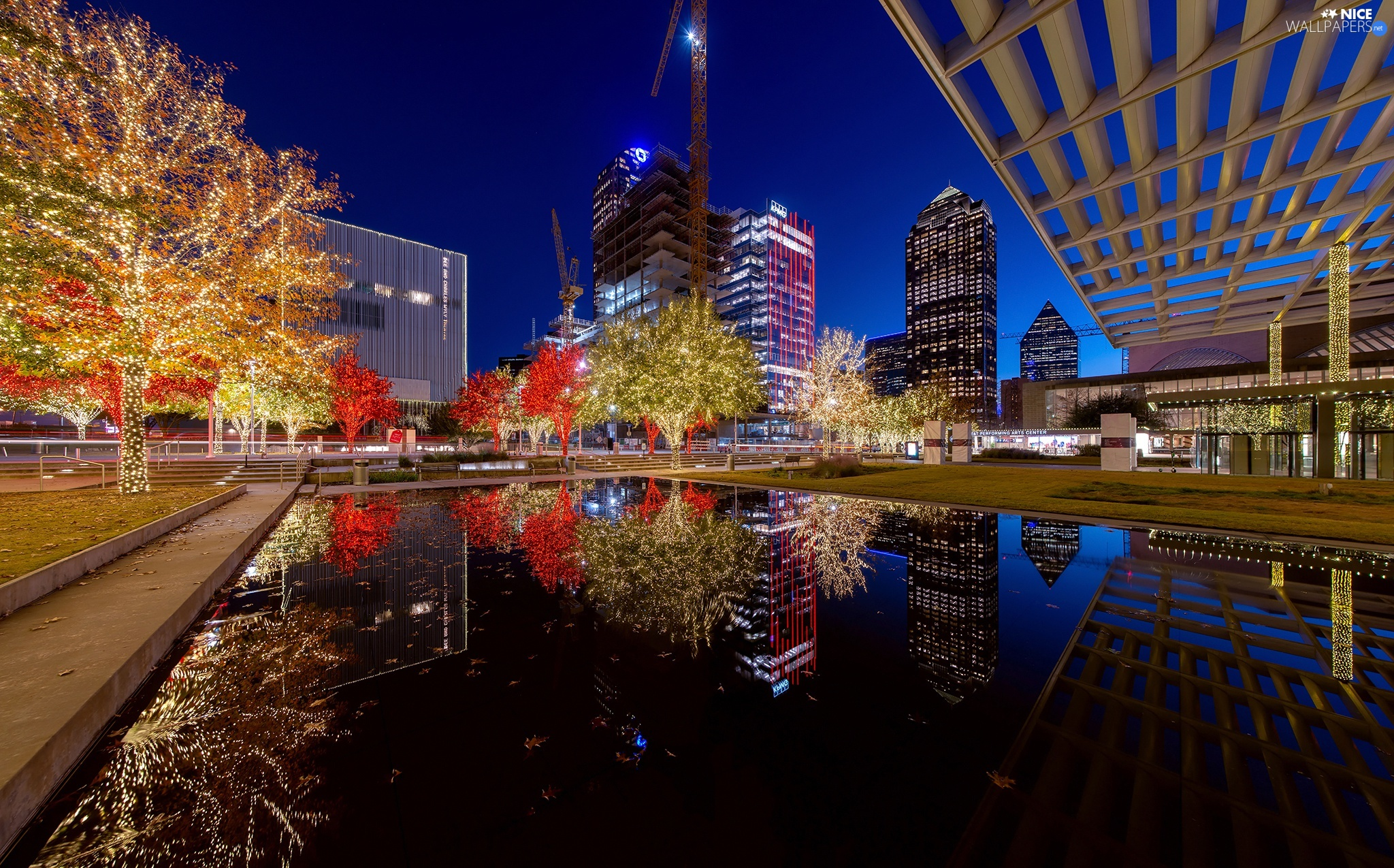 illuminated, Dallas, The United States, viewes, skyscrapers, City at Night, Teksas, Night, trees, pond