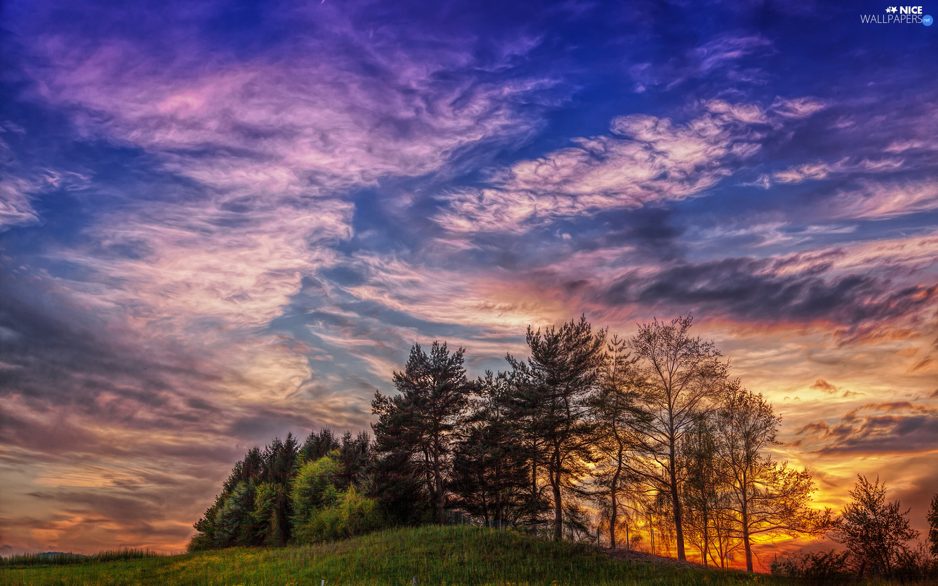clouds, Great Sunsets, trees, viewes, Hill