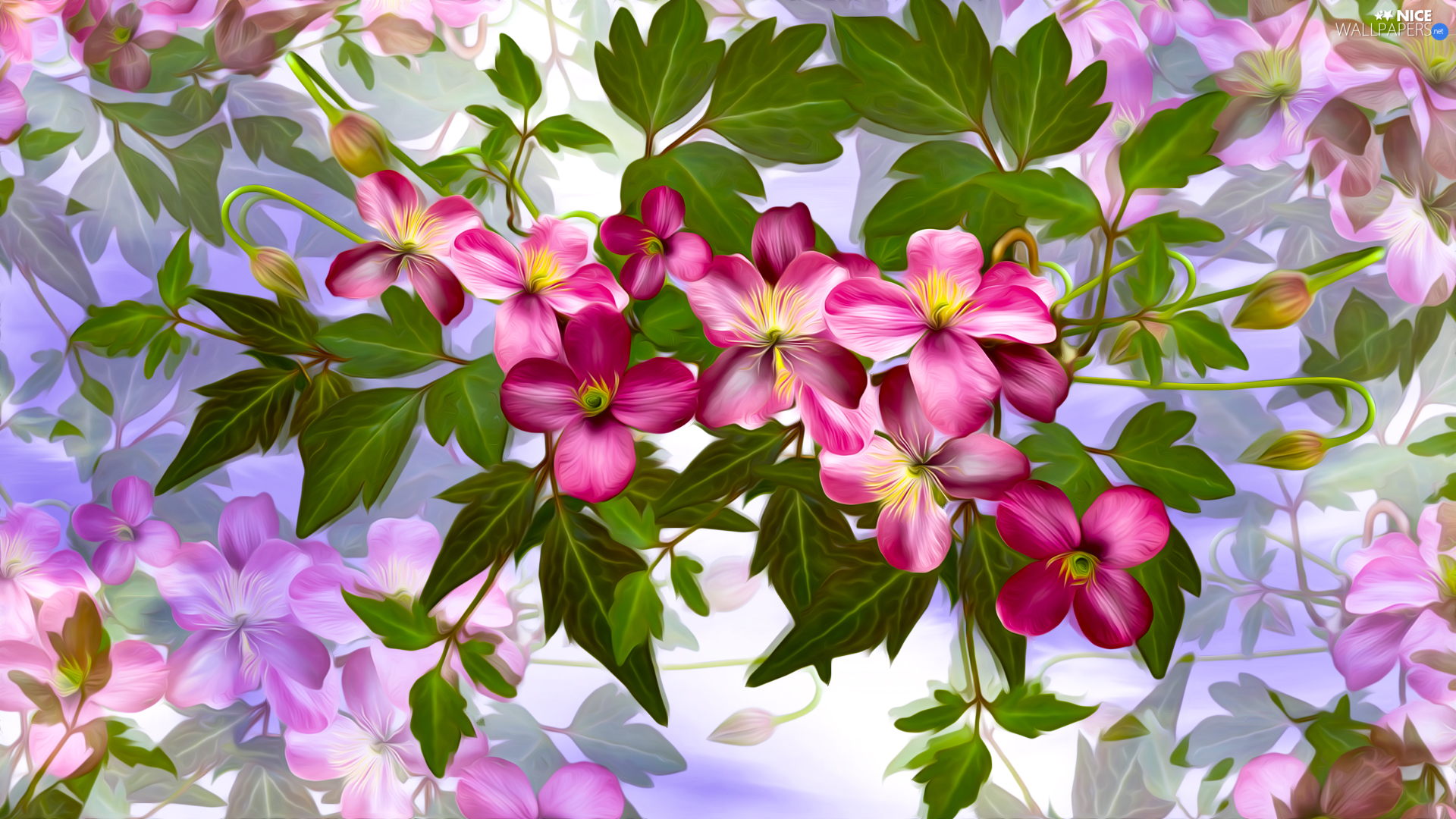 Pink, graphics, Colorful Background, Flowers