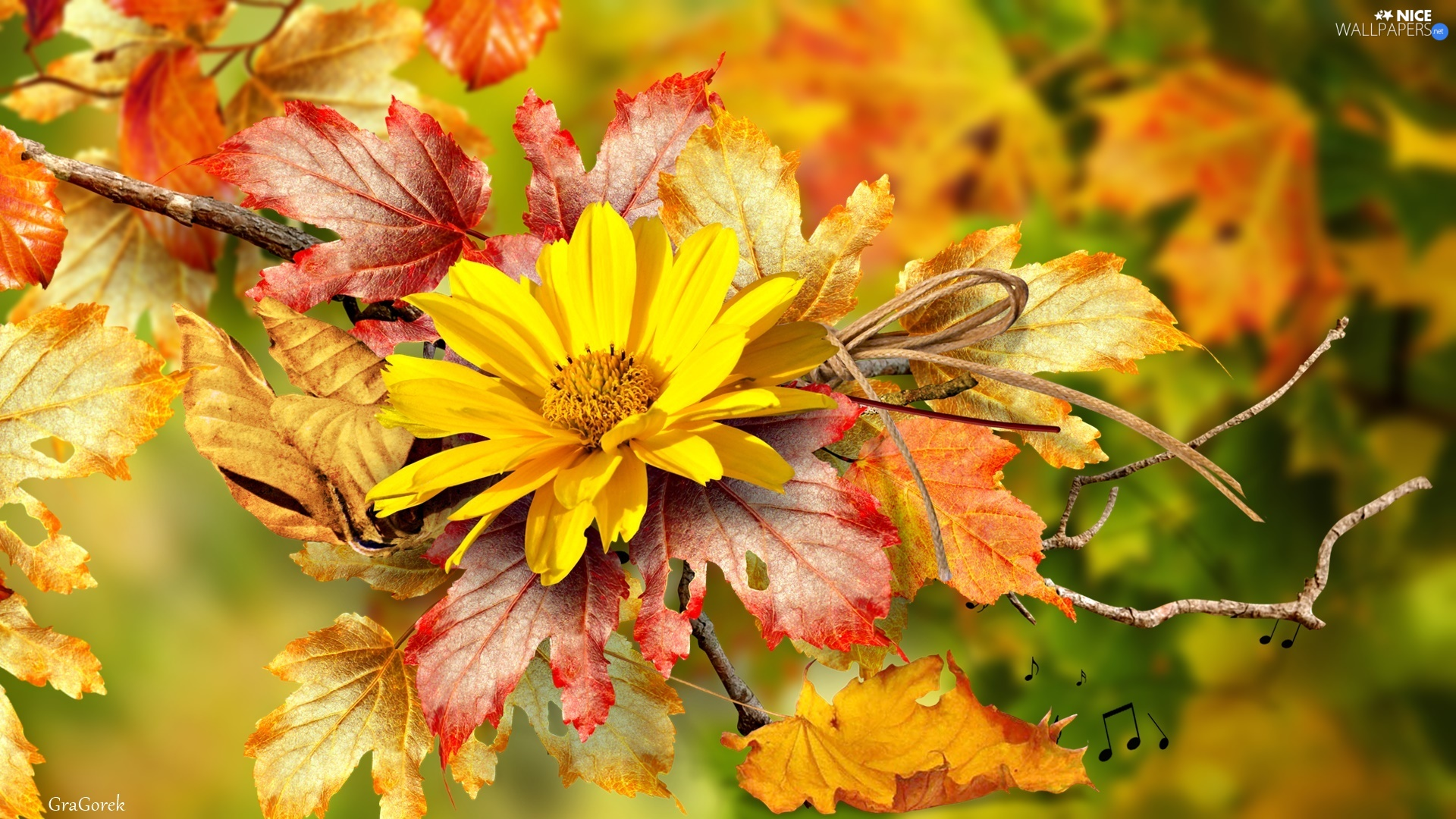 Autumn, Yellow, twig, graphics, Leaf, Colourfull Flowers