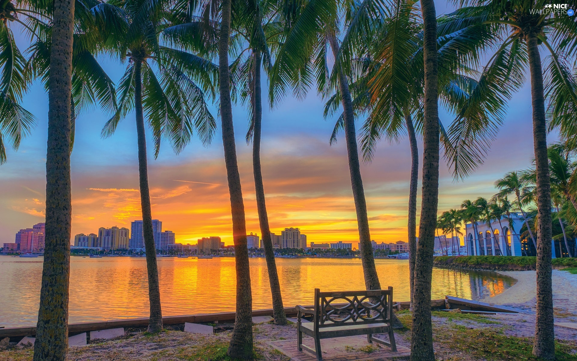 Palms, sea, buildings, Great Sunsets, Bench, Gulf