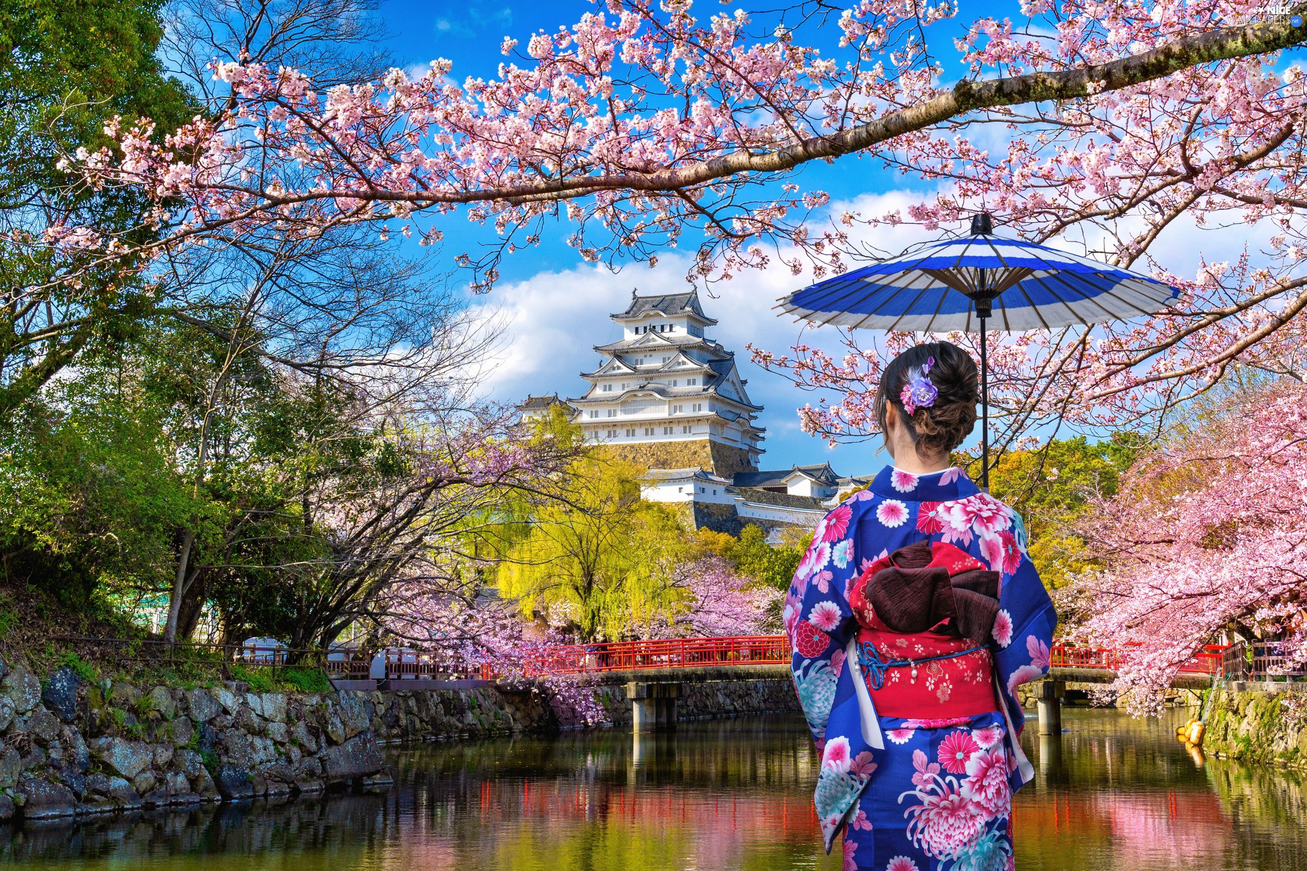 Women, Himeji Castle, Spring, umbrella, trees, Japan, Himeji Village, River, White Heron Castle, viewes, flourishing