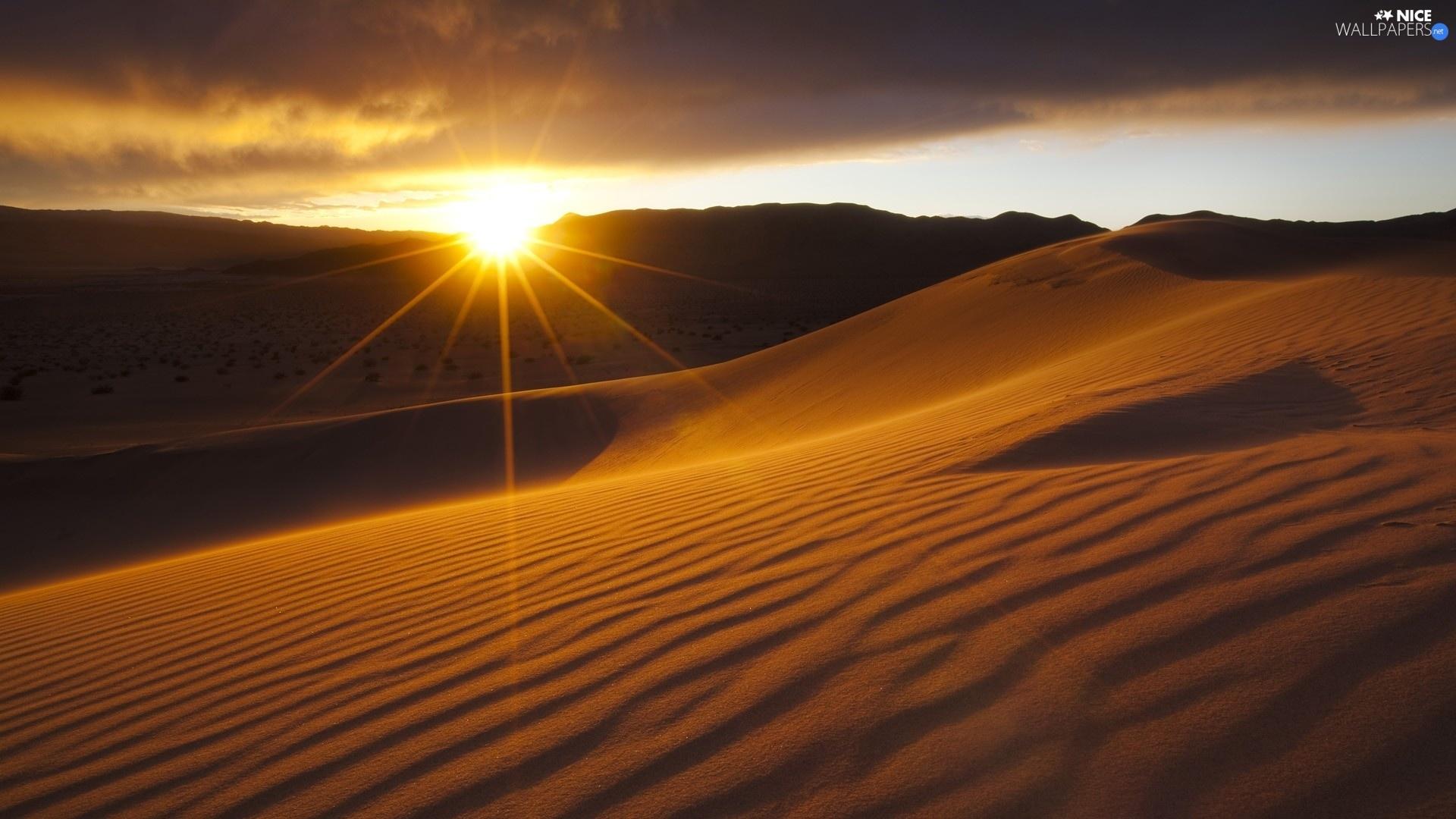 desert, Sun, Sunset Wallpapers HD / Desktop and Mobile