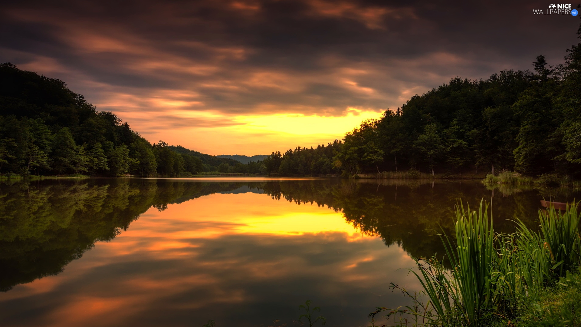 trees, Great Sunsets, scrub, reflection, viewes, lake