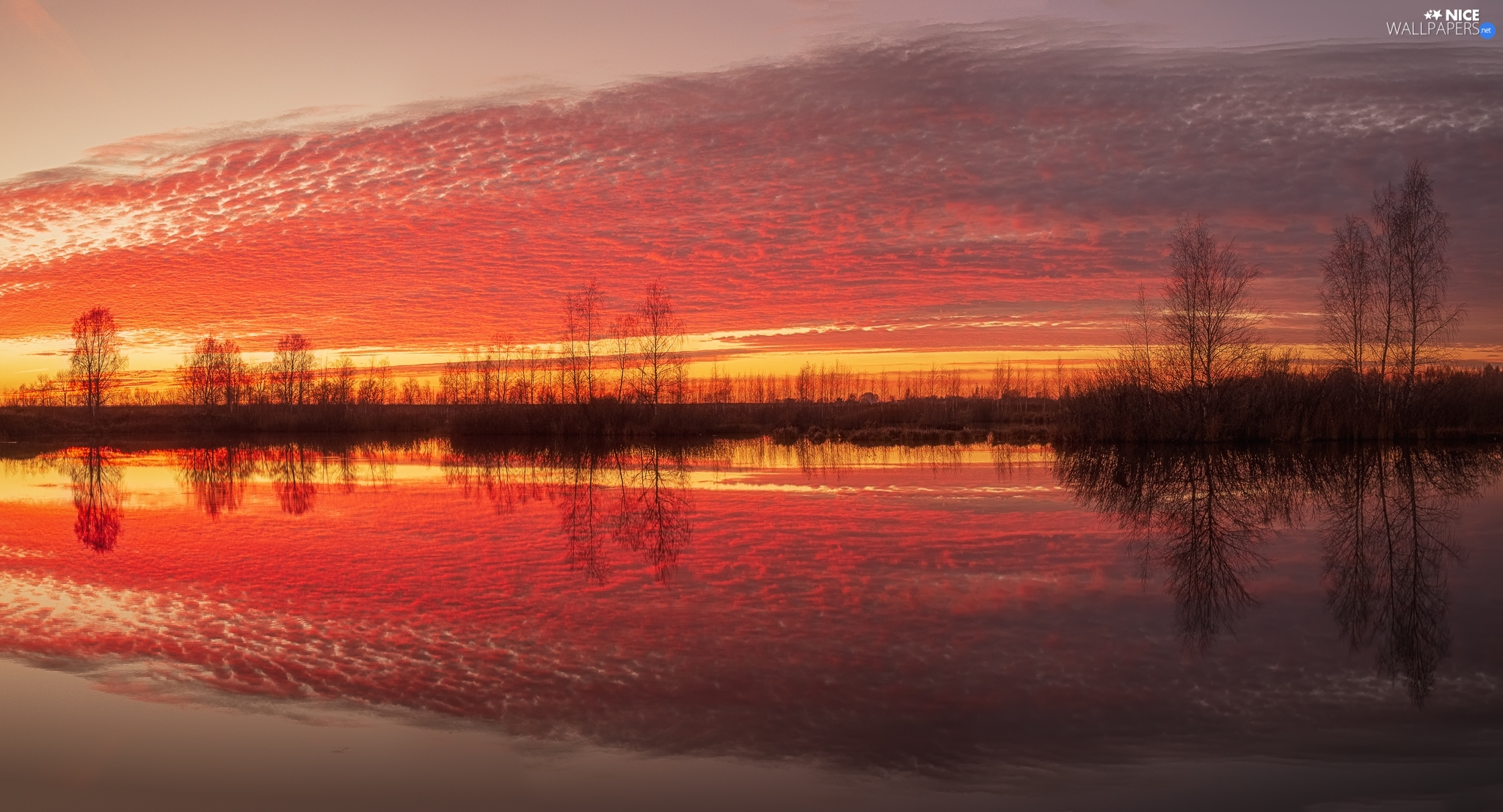 Sky, clouds, reflection, River, viewes, color, Great Sunsets, trees