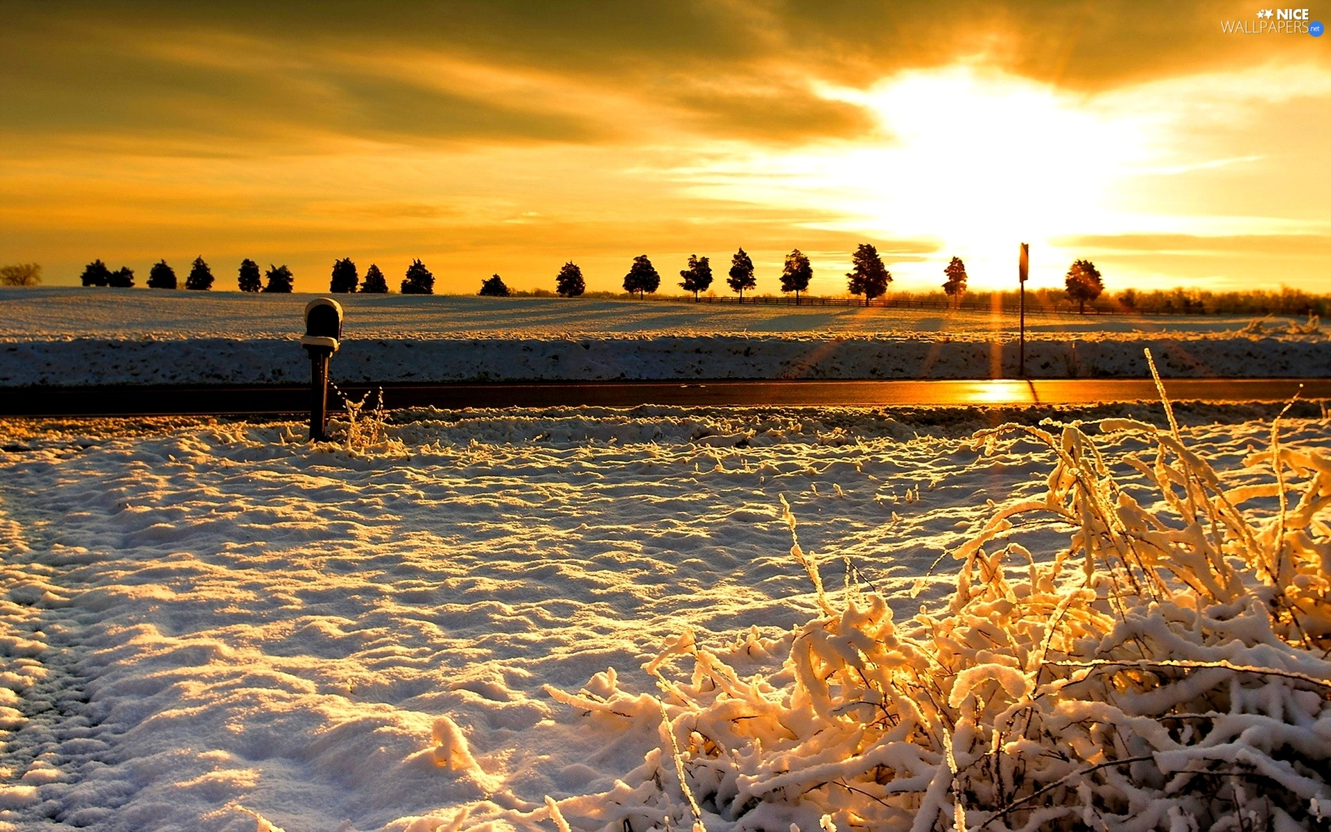 Way, west, snow, winter, field, sun
