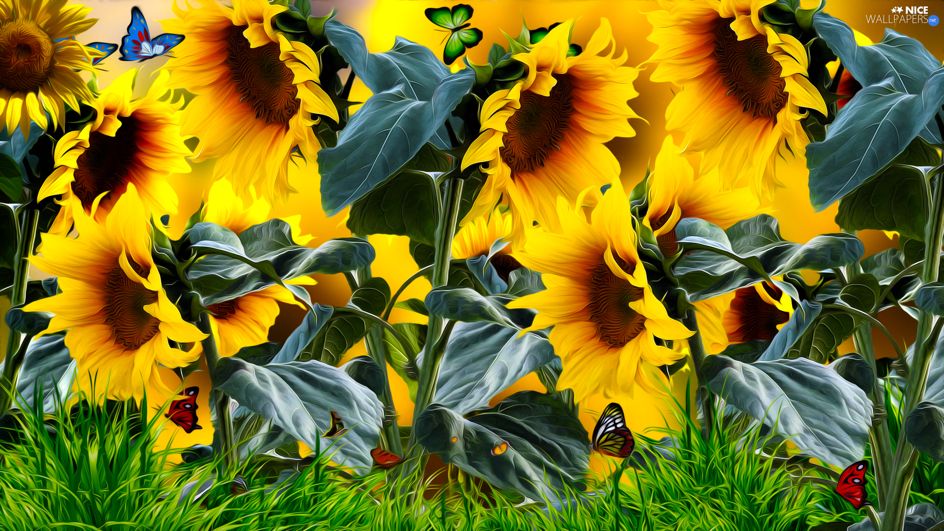 Nice sunflowers, grass, graphics, butterfly