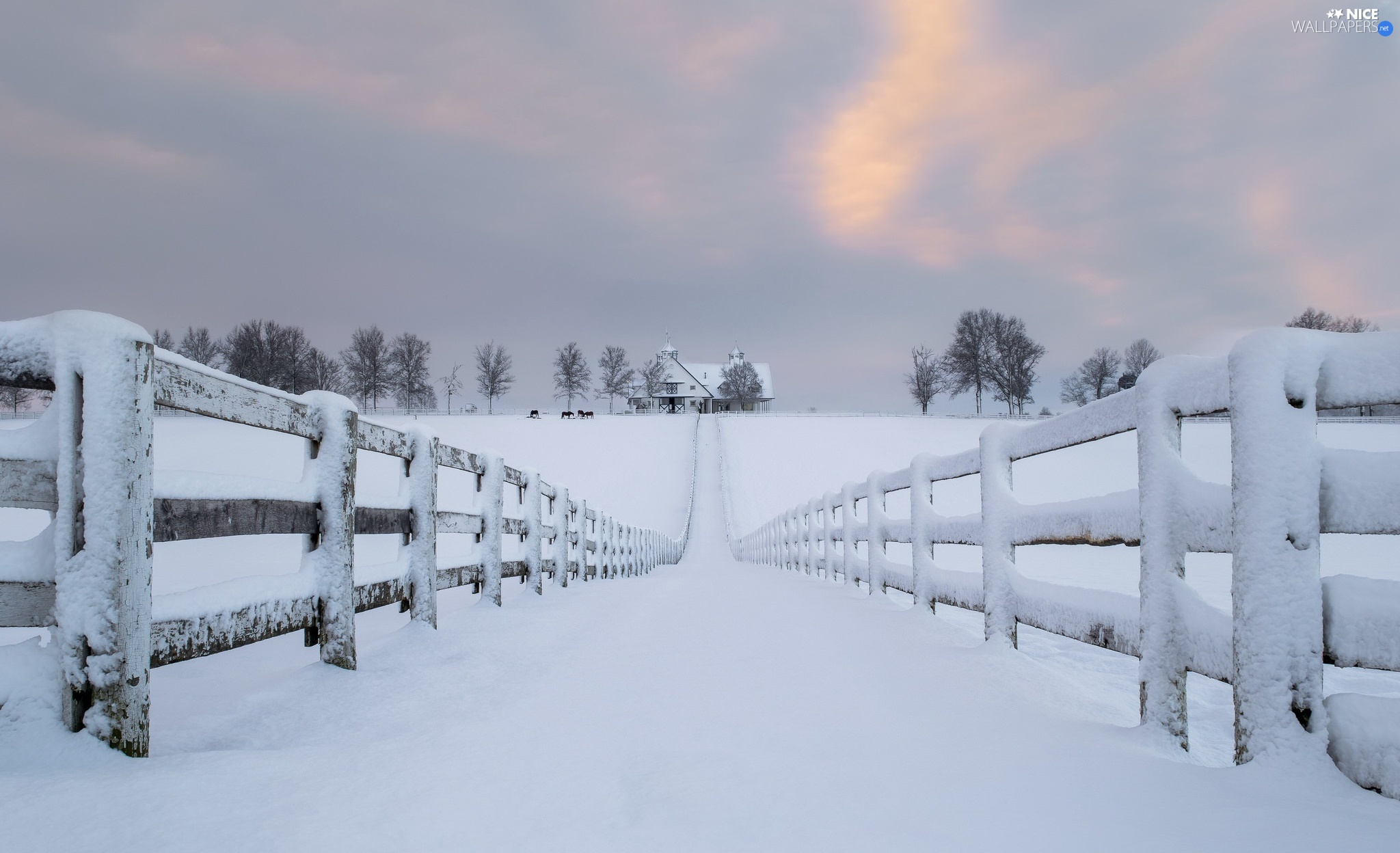 snow, fence, house, Fance, viewes, Way, winter, trees