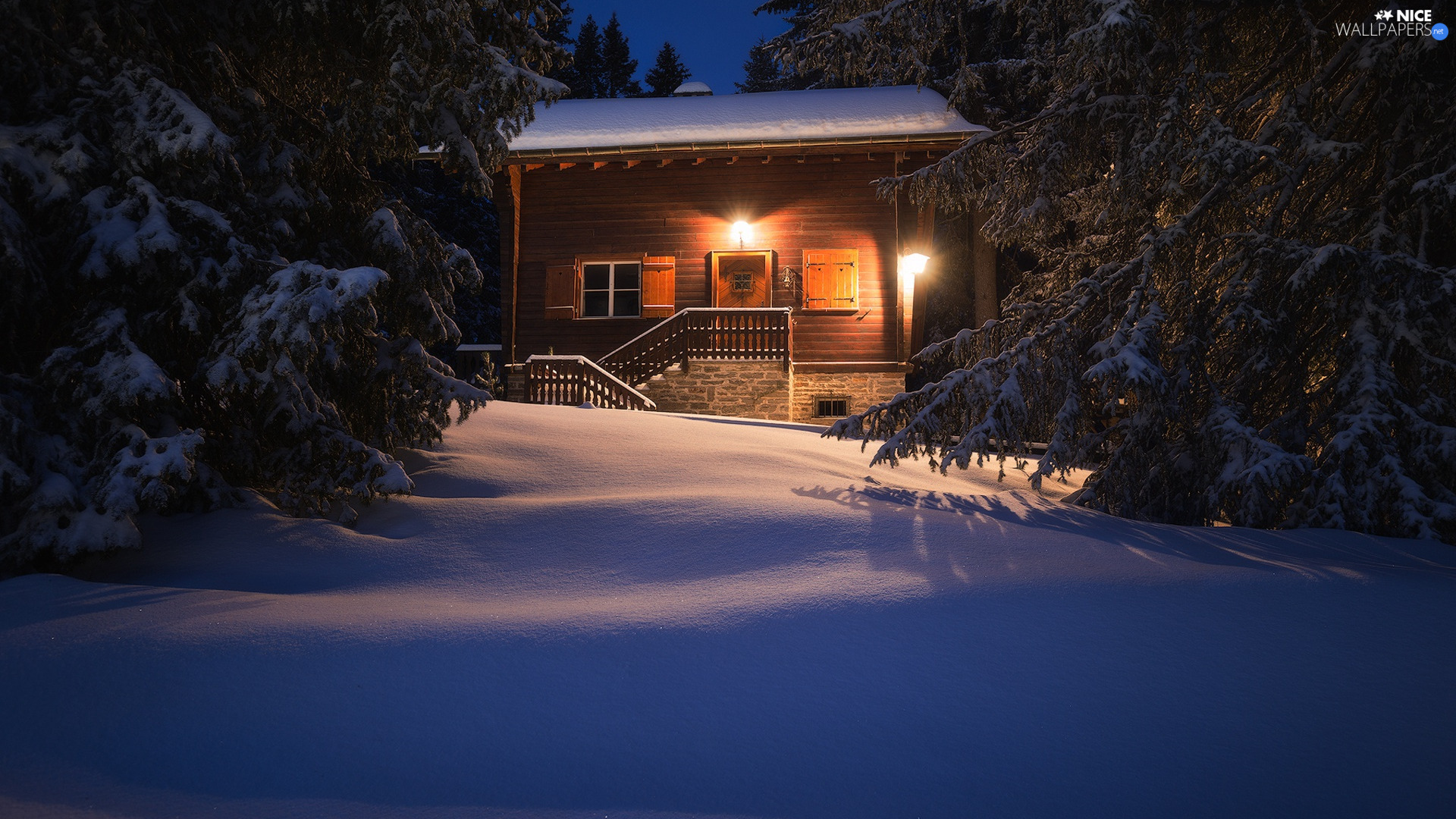 forest, trees, Floodlit, viewes, winter, snow, house