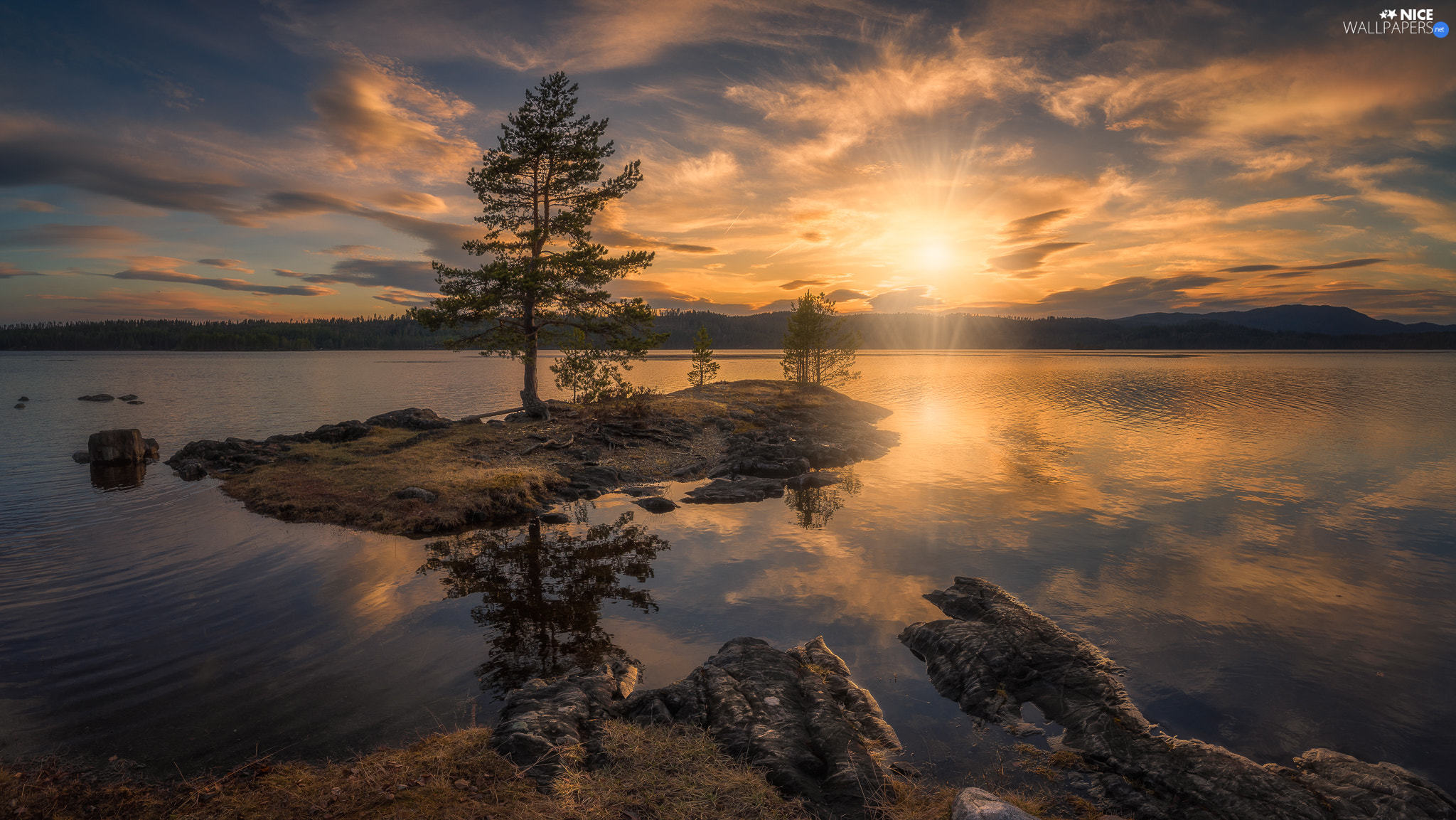 lake, Ringerike Municipality, trees, Sunrise, Norway, Islet, viewes