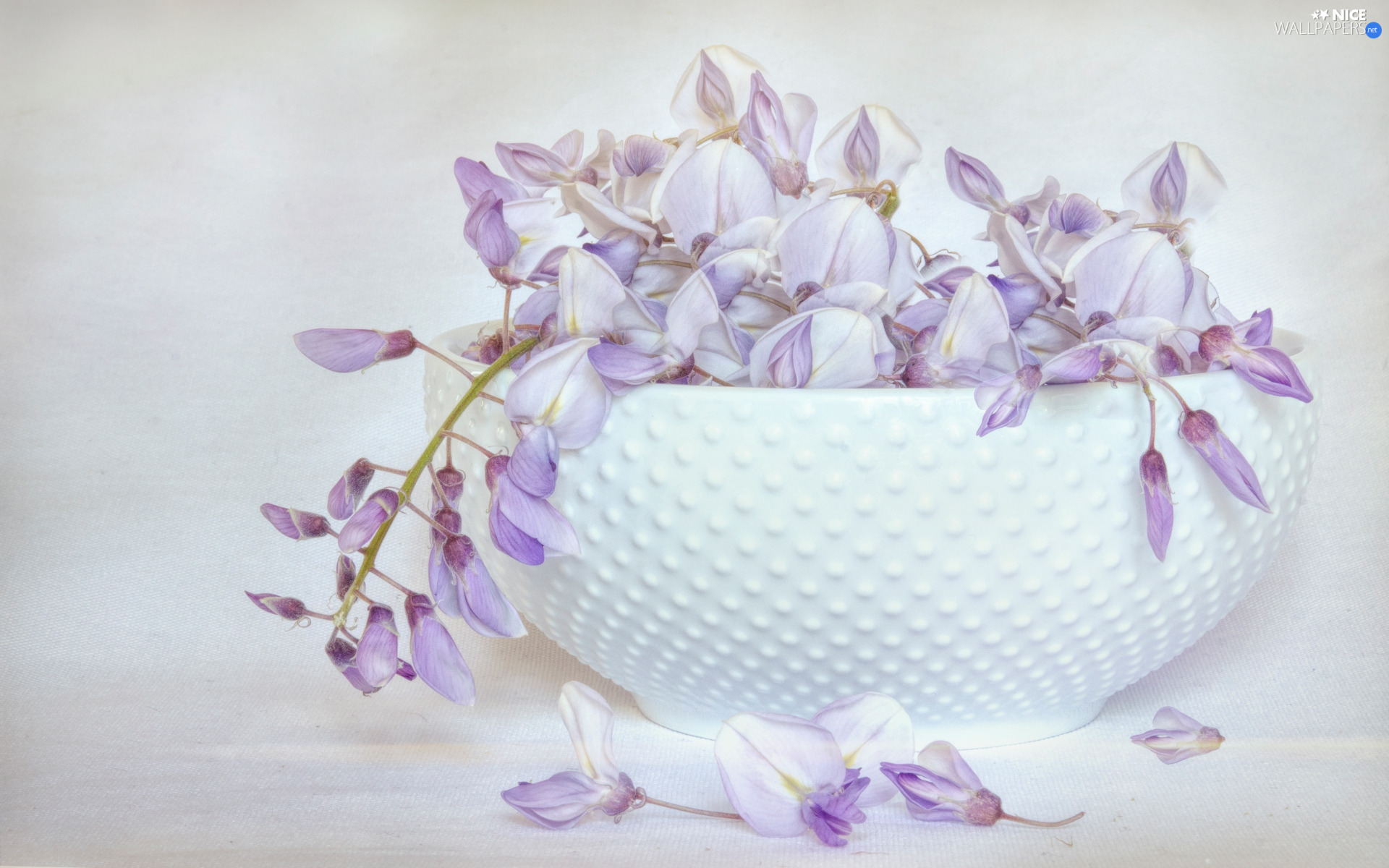 Flowers, vase, graphics, wistaria