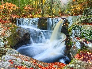 waterfall, forest, autumn, rocks