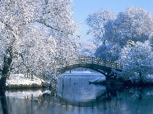 trees, Park, brook, bridges, viewes, Snowy