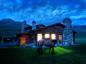 Cabin, Montana, house, Night, Horse