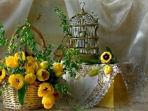 Cage, birds, Yellow, Tulips, basket