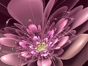 graphics, Pink, Colourfull Flowers