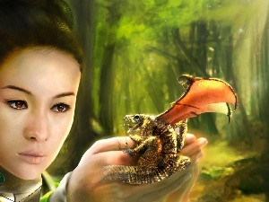 Women, small, Dragon, hand