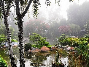 japanese, morning, Fog, Garden