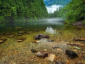 forest, Canada, Stones, Fog, lake