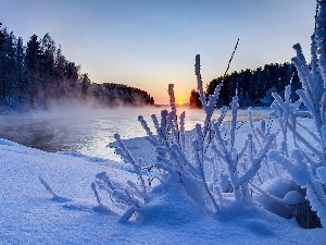 winter, Fog, Great Sunsets, River