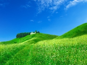 Field, Green, Home, Hill, White, grass
