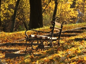 Park, autumn, Leaf, Bench