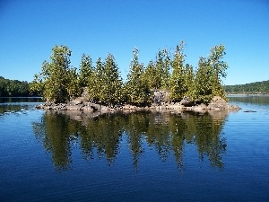 viewes, Islet, Loon, California, lake, trees