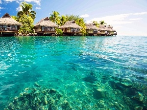Houses, Tropical, Maldives, sea