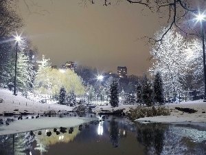 Pond - car, winter, Park