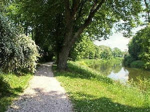 Path, green, trees, viewes, River