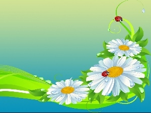 ribbon, graphics, daisies, ladybird, Flowers