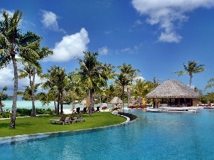 spa, Bora Bora, Palms, Pool, Ocean