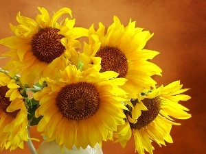 bouquet, sunflowers