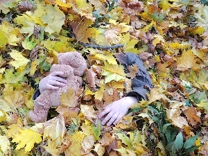 teddybear, Kid, Leaf