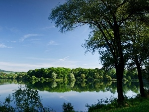 lake, trees, viewes, woods