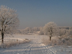 winter, Field, Way, snow